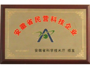 Private technology enterprises in anhui province